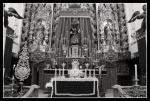 quinario santa faz 2013(10)