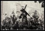 Via Crucis Magno-Santa Faz(15)